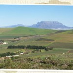 Nitida valley